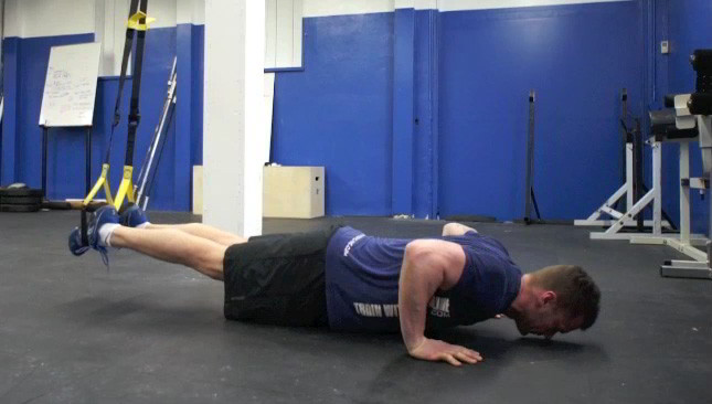 Trx Suspended Push Ups Exercise
